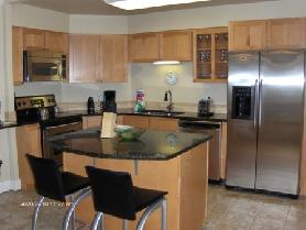1BD/1BA Fully Furnished Condo w/ Downtown Views
