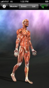 Muscle Trigger Points iPhone & iPad App