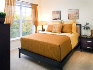 Avalon at Lexington Hills Fully Furnished Suites convenient to all Longwood Medical Area (LMA) Hospitals