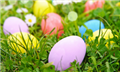 Come for brunch and an egg hunt at St. Julien Hotel and Spa in Boulder this Sunday.