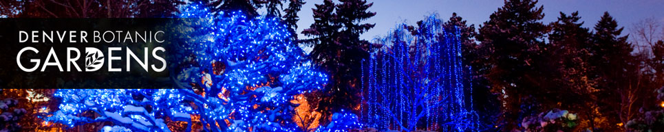 Come see thousands of colored lights while you walk around the garden grounds and sip hot cocoa at the Denver Botanical Gardens.